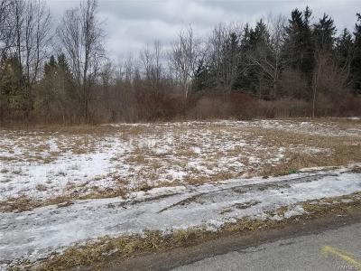 Alden Residential Lots & Land For Sale: Vl Crittenden Road
