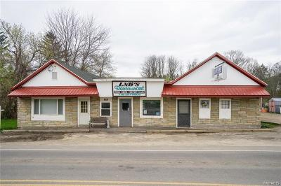 East Otto NY Commercial Lease A-Active: $1,595