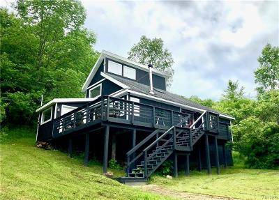 Ellicottville Single Family Home A-Active: 6787 Hencoop Hollow Rd Road