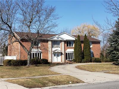 Erie County Single Family Home A-Active: 237 Dan Troy Drive