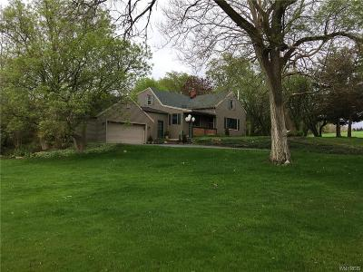 Orchard Park Single Family Home U-Under Contract: 4647 California Road