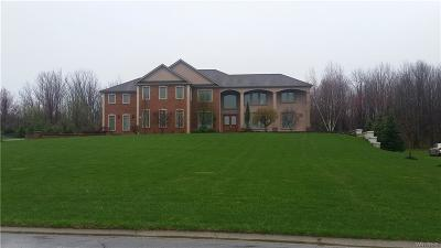 Orchard Park Single Family Home A-Active: 29 Grand View Trl