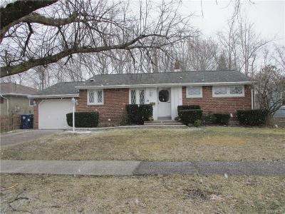 Niagara County Single Family Home A-Active: 19 North Mason Court