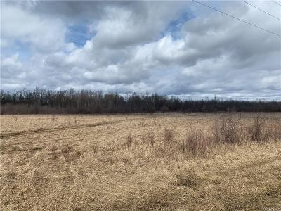 Genesee County Residential Lots & Land U-Under Contract: Cohocton Road