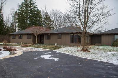 Erie County Single Family Home A-Active: 1090 North Davis Road