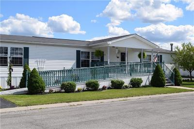 Niagara County Single Family Home A-Active: 851 Birchwood Drive