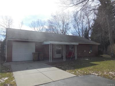 Erie County Single Family Home A-Active: 800 Cayuga Creek Road