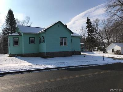 Niagara County Single Family Home A-Active: 82 Lake Avenue