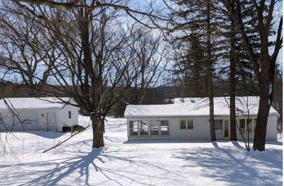 Chautauqua County Single Family Home A-Active: 483 Route 39