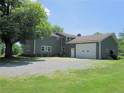Erie County Single Family Home A-Active: 13021 Warner Hill Road