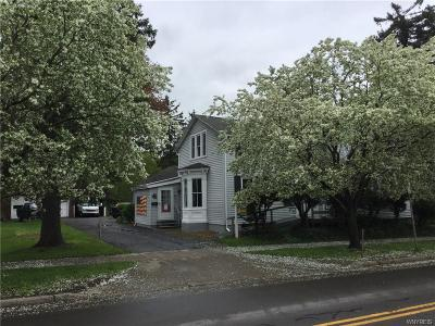 Aurora Single Family Home A-Active: 46 Olean Street