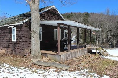 Allegany County, Cattaraugus County Single Family Home A-Active: 770 Sanford Hollow Road