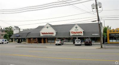 Erie County Commercial A-Active: 5225 Main Street