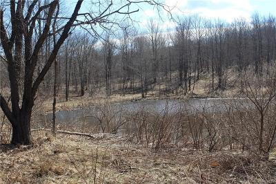 Ellicottville Residential Lots & Land A-Active: Lot 1 Dublin Road