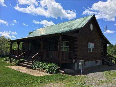 Allegany County, Cattaraugus County Single Family Home A-Active: 10775 Town Line Road