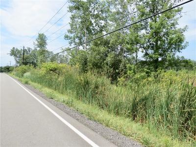 Lancaster Residential Lots & Land A-Active: V/L Peppermint Road North