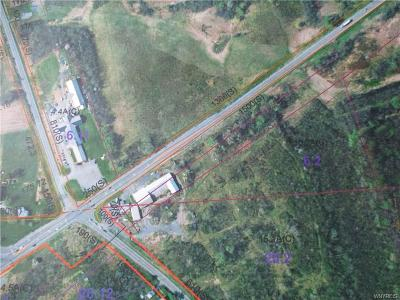 Seneca County Residential Lots & Land For Sale: 2988 Us Route 20