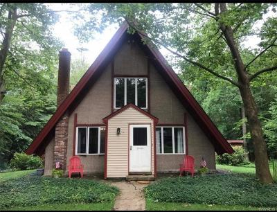 Colden Single Family Home U-Under Contract: 6591 C Omphalius Road #C