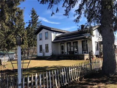 Castile Single Family Home For Sale: 5769 State Route 19a