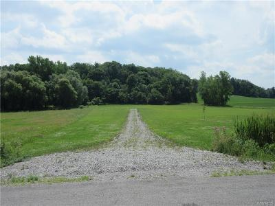 Genesee County Residential Lots & Land A-Active: Horseshoe Lake Road