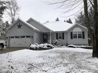 Genesee County Single Family Home U-Under Contract: 910 Mammot Road