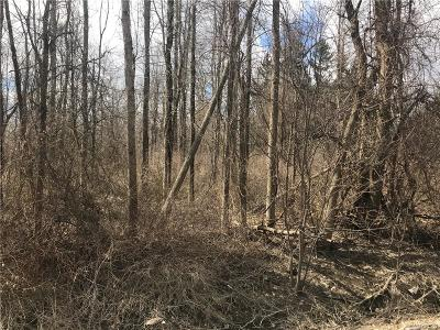 Lancaster Residential Lots & Land A-Active: 264 Stony Road