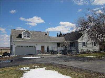 Genesee County Single Family Home A-Active: 8009 Bank Street Road