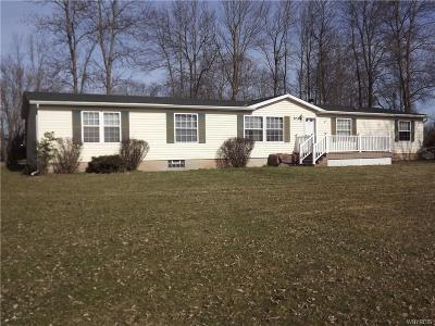 Orleans County Single Family Home A-Active: 3153 North Gravel Road