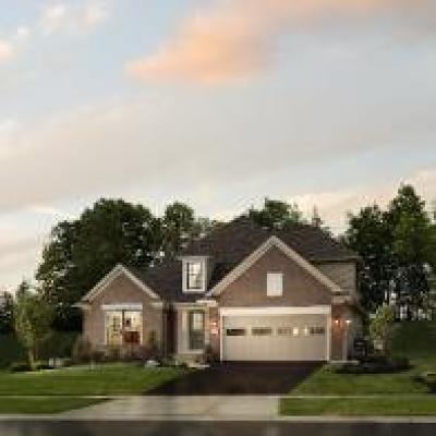 West Seneca Single Family Home For Sale: 26 Vista Court