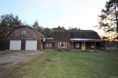 Orleans County Single Family Home A-Active: 12524 Hemlock Ridge Road