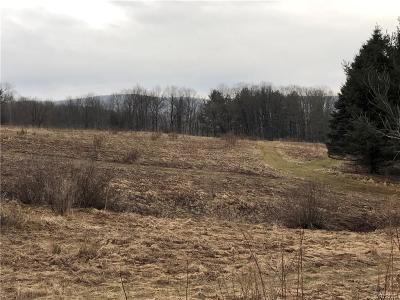 Ellicottville Residential Lots & Land A-Active: Sommerville Valley Road