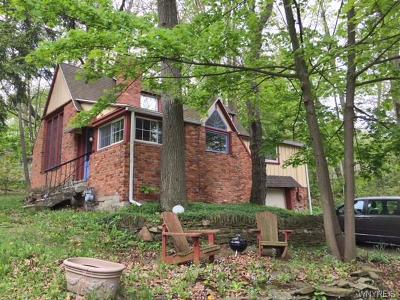 Castile Single Family Home For Sale: 6994 45 Wesley Avenue
