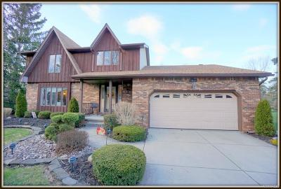 Niagara County Single Family Home A-Active: 5821 Dunnigan Road