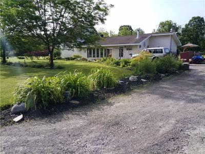 Niagara County Single Family Home A-Active: 9986 Hall Road