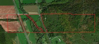 Allegany County, Cattaraugus County Residential Lots & Land C-Continue Show: Nys Route 16