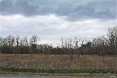 Niagara County Residential Lots & Land A-Active: V/L Peet Street