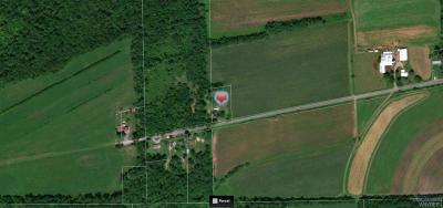 Genesee County Residential Lots & Land A-Active: 3899 Ridge Road