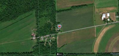 Elba Residential Lots & Land A-Active: 3899 Ridge Road