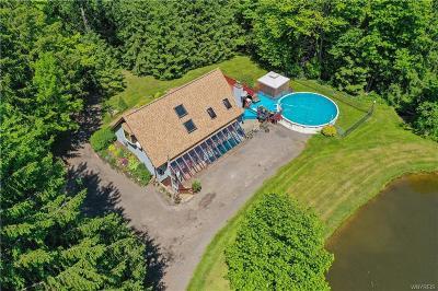 Boston Single Family Home For Sale: 6252 W Tillen Road