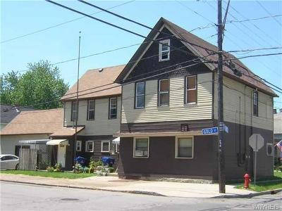 Buffalo Multi Family 2-4 A-Active: 115 Vanderbilt Street