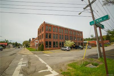 Erie County Commercial A-Active: 243 West Main St