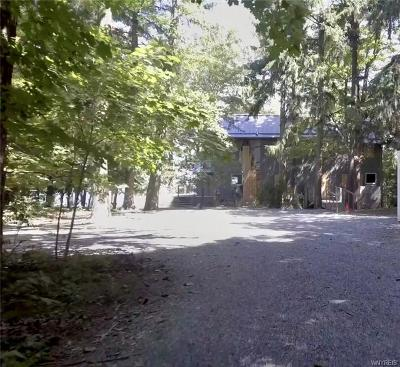 Erie County Single Family Home A-Active: 6456 Hamilton Drive