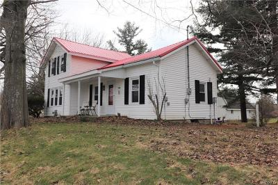 Genesee County Single Family Home A-Active: 9202 Alleghany Road