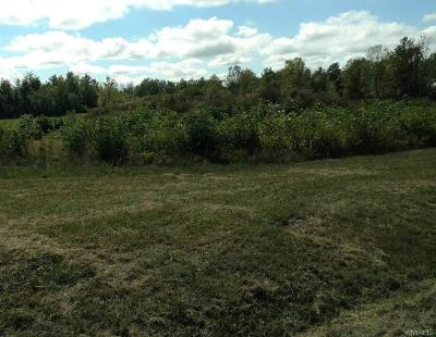 Erie County Residential Lots & Land A-Active: 13323 Stage Road