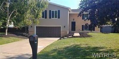 Niagara County Single Family Home A-Active: 8 Bob O Link Lane