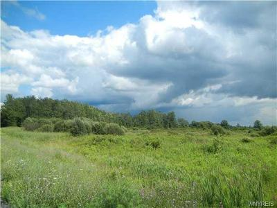 Erie County Residential Lots & Land A-Active: V/L County Road