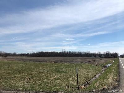Wheatfield Residential Lots & Land Pending: Lot #6 Witmer Road