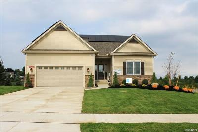 Erie County Single Family Home A-Active: 5572 Cooper Ridge