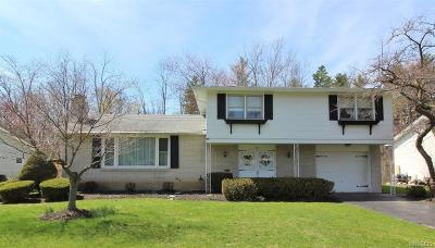 Williamsville Single Family Home A-Active: 33 Culpepper Road