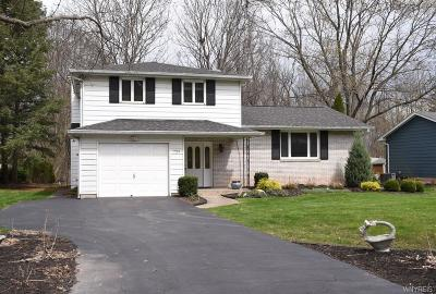 Lewiston NY Single Family Home A-Active: $225,900